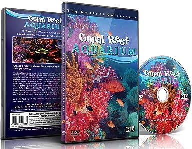 DVD de acuario - Acuario de arrecife de coral 110 minutos de HD Peceras con música