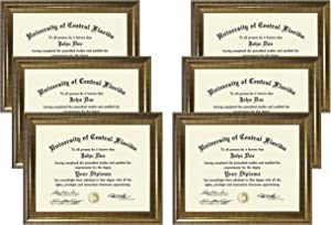Studio 500, 8.5 by 11-inch, Executive Document Frames, Champagne, 6-Pack