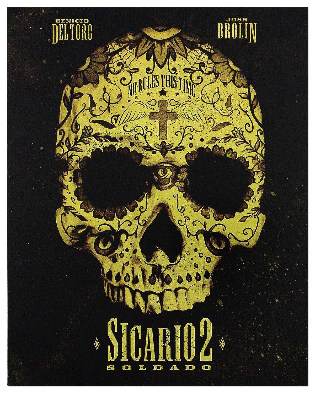 Amazon.com: Sicario 2: Soldado - Steelbook [Blu-ray] [2018 ...