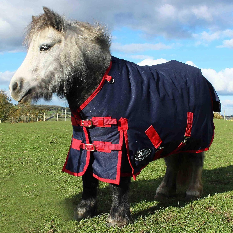 Gallop 200/g//m/² Shetland Poulain pluie Tailles 3/similicuir /à 4/ft3in