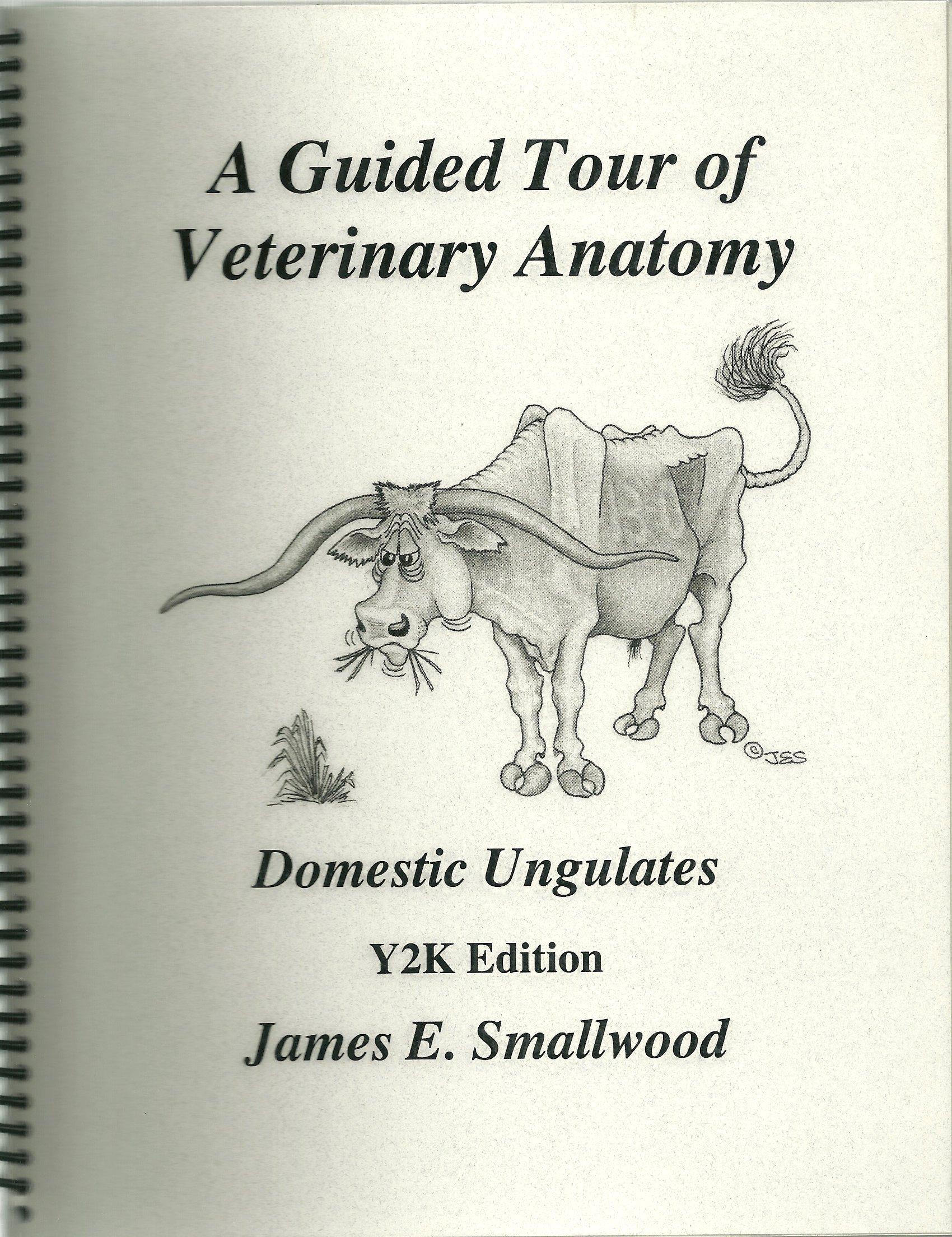 A Guided Tour of Veterinary Anatomy: Domestic Ungulates: James E ...