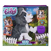 Furreal Friends Mascota Electrónica Ricky, El Cachorro Habilidoso