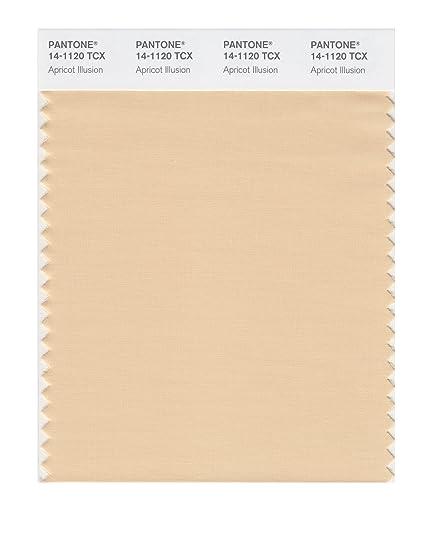PANTONE SMART 14-1120X Color Swatch Card, Apricot Illusion - Wall ... 4e925b91a4