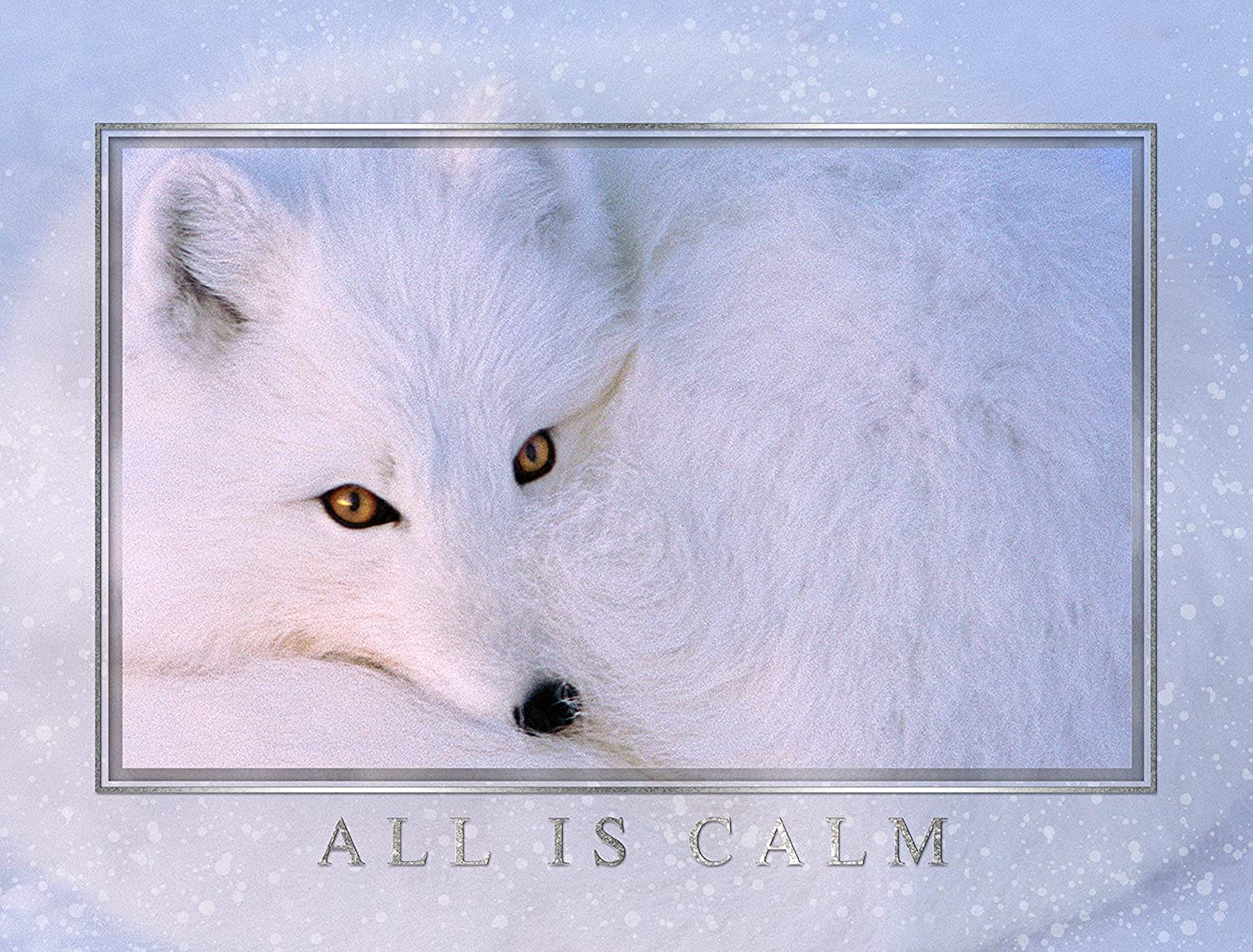 """Snow White Fox"" Arctic Fox - Boxed Wildlife Christmas Cards - 5 5/8 x 7 3/8 Inches - 15 Heavyweight Cards and 16 Envelopes"