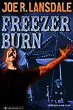 Freezer Burn (English Edition)