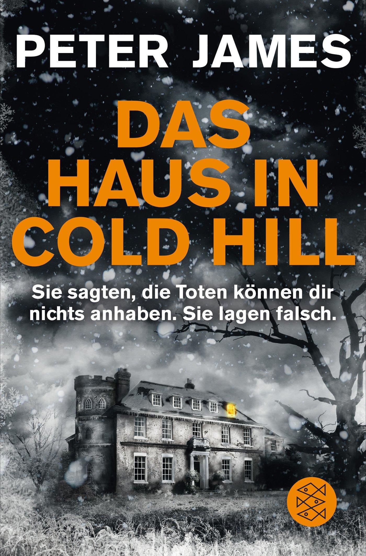 Das Haus in Cold Hill: Roman: Amazon.de: Peter James, Christine Blum ...
