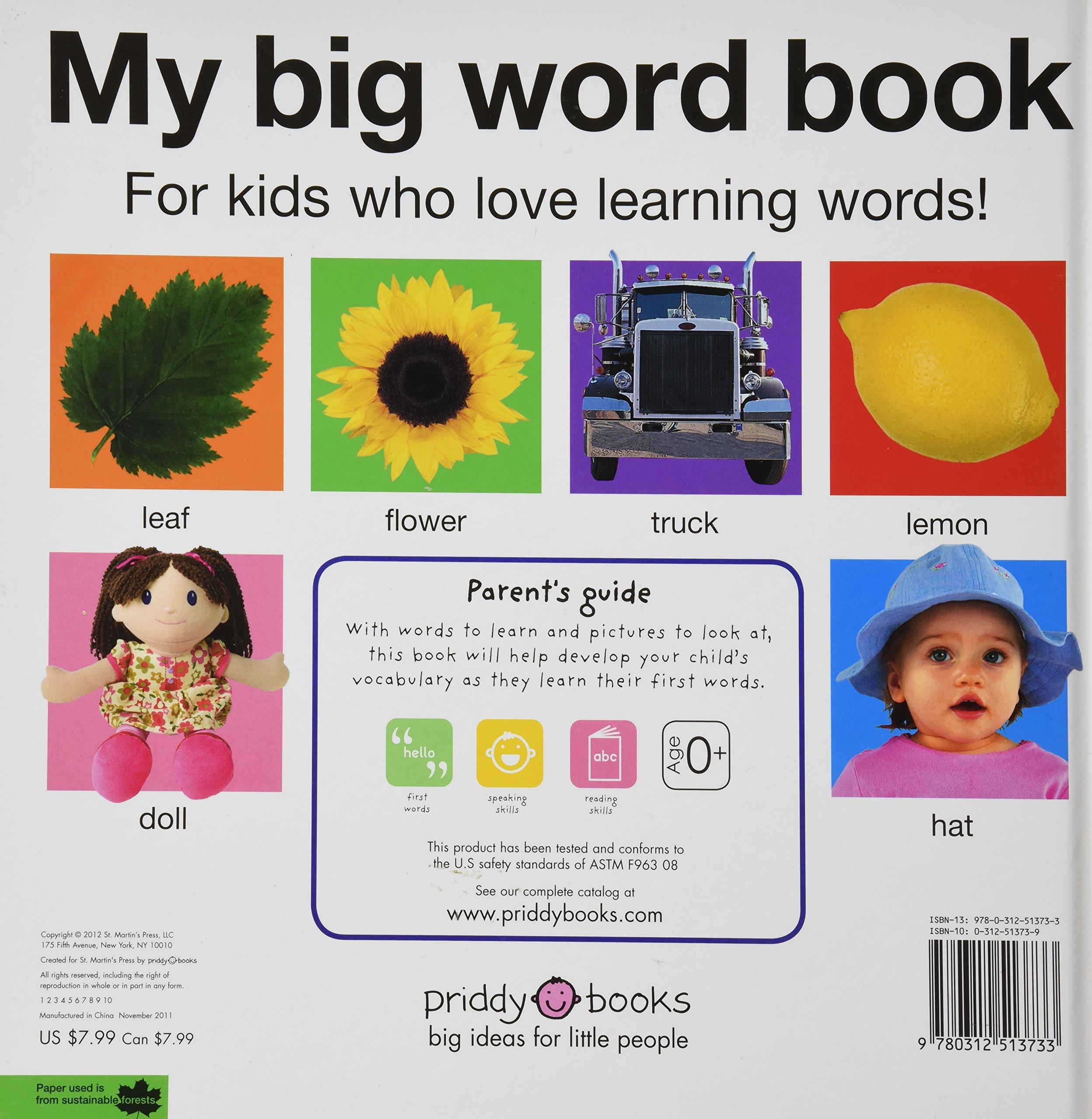 My Big Word Book (casebound) (My Big Board Books): Roger Priddy ...