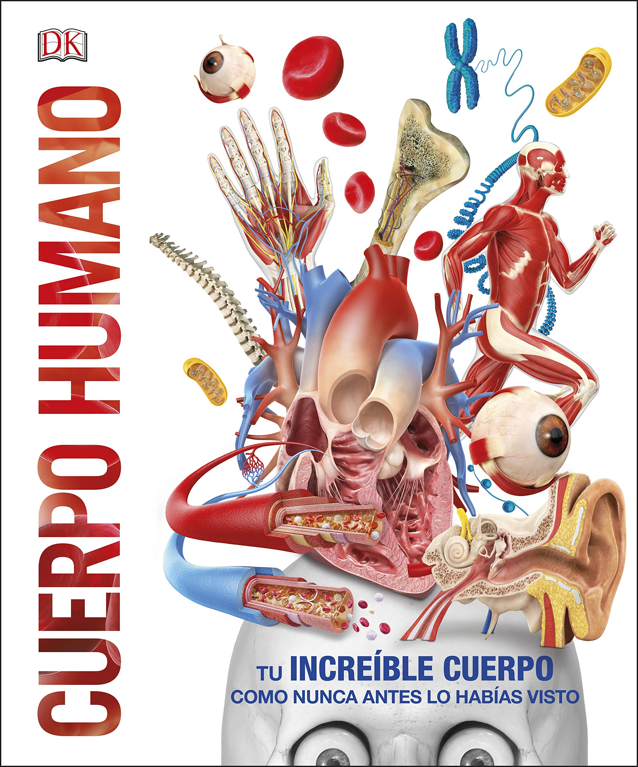 Cuerpo humano: Como nunca antes lo habías visto Conocimiento ...