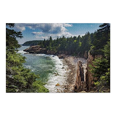 Acadia National Park, Maine - Monument Cove 9000475 (Premium 1000 Piece Jigsaw Puzzle for Adults, 20x30, Made in USA!): Toys & Games