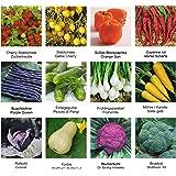 Samen - Saatgutsortiment - Set - Mix - Mischung - kleiner Gemüsegarten 3 - 12 Sorten - 585 Samen