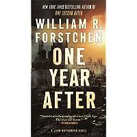 One Year After: A John Matherson Novel: 2
