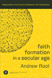 Faith Formation in a Secular Age : Volume 1 (Ministry in a Secular Age): Responding to the Church's Obsession with Youthfulness