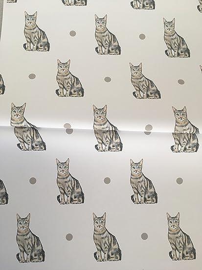 Cat, diseño de gato atigrado, papel de regalo, papel de regalo, para
