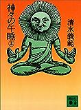 神々の午睡(上) (講談社文庫)