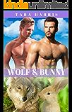 Wolf & Bunny: A Gay M/M MPREG Shifter Romance