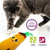 Pet Craft Supply Silly Snacks and Funny Food Crinkle Cuddling Catnip and Silvervine Toys - Interactive Cat Toys…