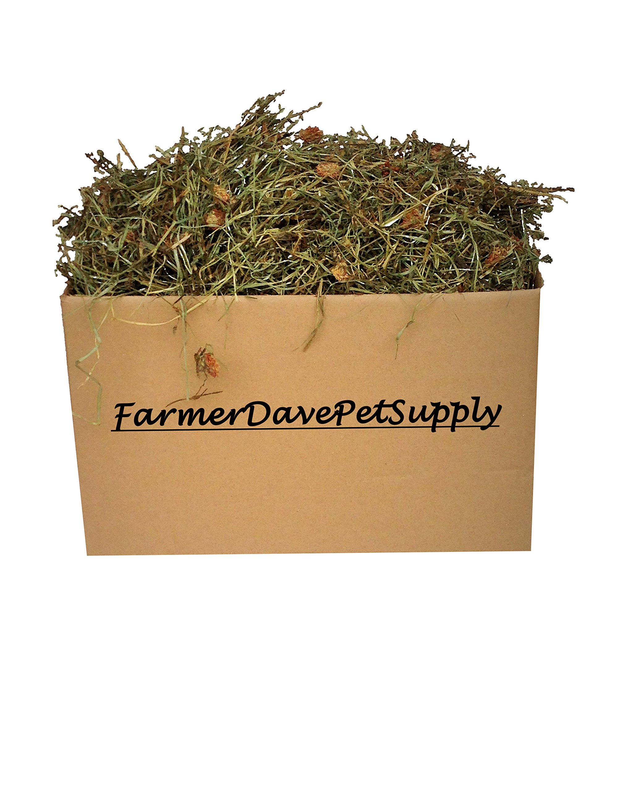 FarmerDavePetSupply 10 Lb. Premium 2nd Cut Timothy Hay with Clover, Bunny, and Small Animal Pet HAY-in-A-Box by FarmerDavePetSupply