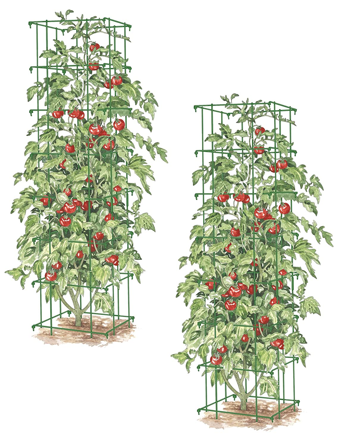 Gardener s Supply Company Square Heavy Gauge Extra Tall Tomato Cage, Set of 2 Green