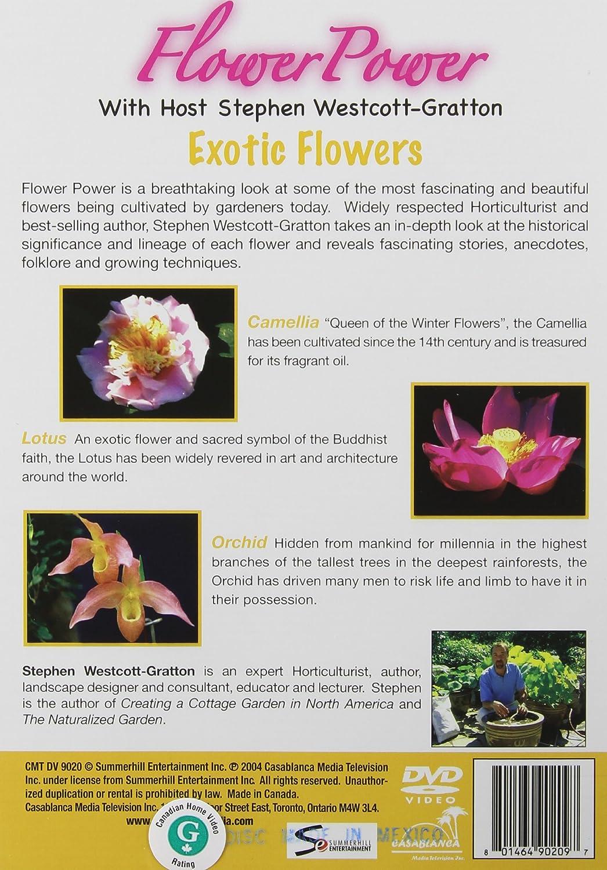 Amazon flower power exotic flowers flower power movies tv izmirmasajfo