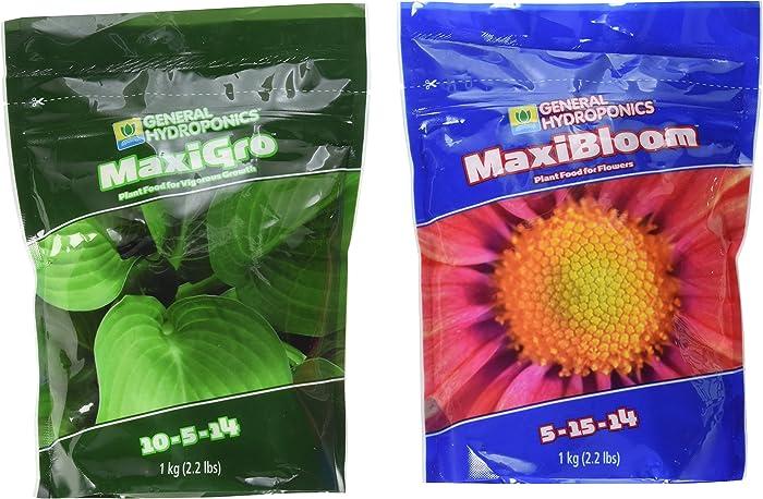 Top 10 Lettuce Hydroponics Plant Food