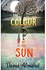 The Colour of the Sun Kindle Edition