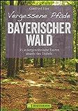 Wanderführer Bayerischer Wald: 35 stille Touren abseits des Trubels. Vergessene Pfade im Bayerwald. Entspannte Wanderungen mit Kindern durch den Bayerischen Wald. (Erlebnis Wandern)