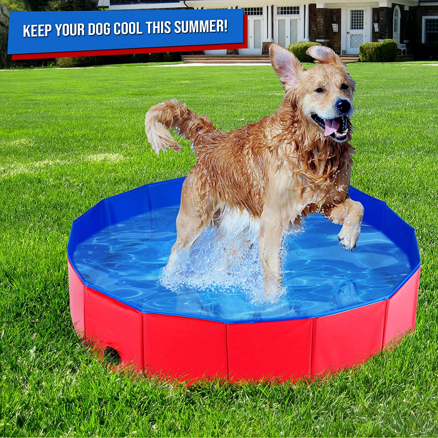 Sturdy High Quality PVC with Reinforced Oxford Walls Ideal for Pets Puppy Cats Kids Pool 120X30cm Foldable Dog Paddling Pool Medium Bath Tub or Ball Pit Pet Swimming Pool