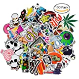 Laptop Stickers [100 Pcs], Leyaron Vinyl Car Stickers Motorcycle Bicycle Luggage Decal Graffiti Patches Skateboard Stickers for Laptop - Random Sticker Pack