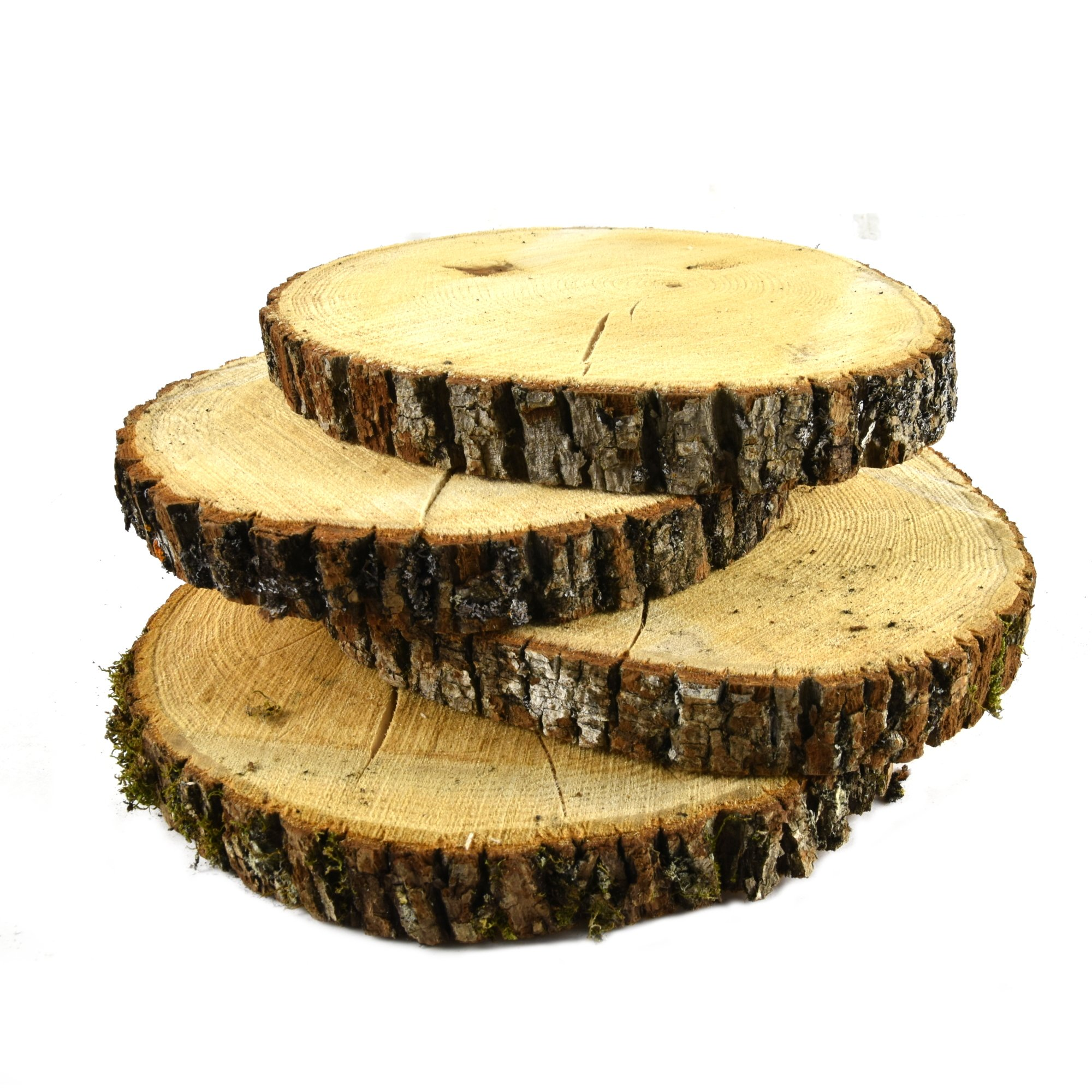 Natural Untreated Basswood Slabs 7'' to 10'' Diameter (Large) - Excellent for Weddings, Centerpieces, DIY Projects, Table Chargers Or Decoration! by Woodland Decor (Set of Four Slabs)- with Cracks