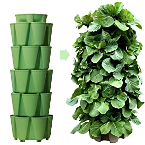 Huge GreenStalk 5 Tier Vertical Garden Planter with Patented Internal Watering System Great for Growing a Variety of Strawberries, Vegetables, Herbs, Flowers (Luscious Green)