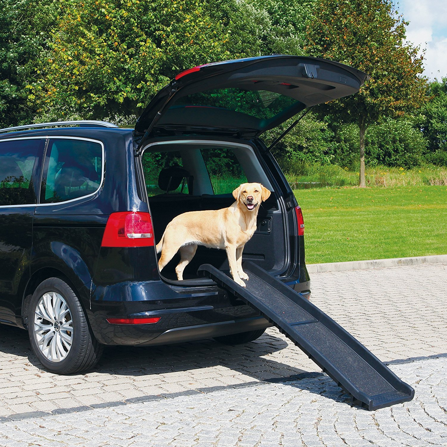 Folding and Travel Dog Ramp - For All Dog Sizes