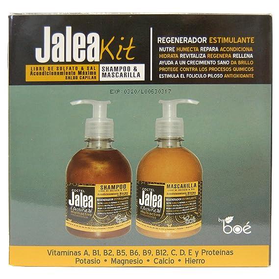 Set de Champú sin sulfatos de 315ml y mascarilla sin sulfatos de 285g. Jalea real para el cabello, sin parabenos con seda hidrolizada, vitaminas y ...