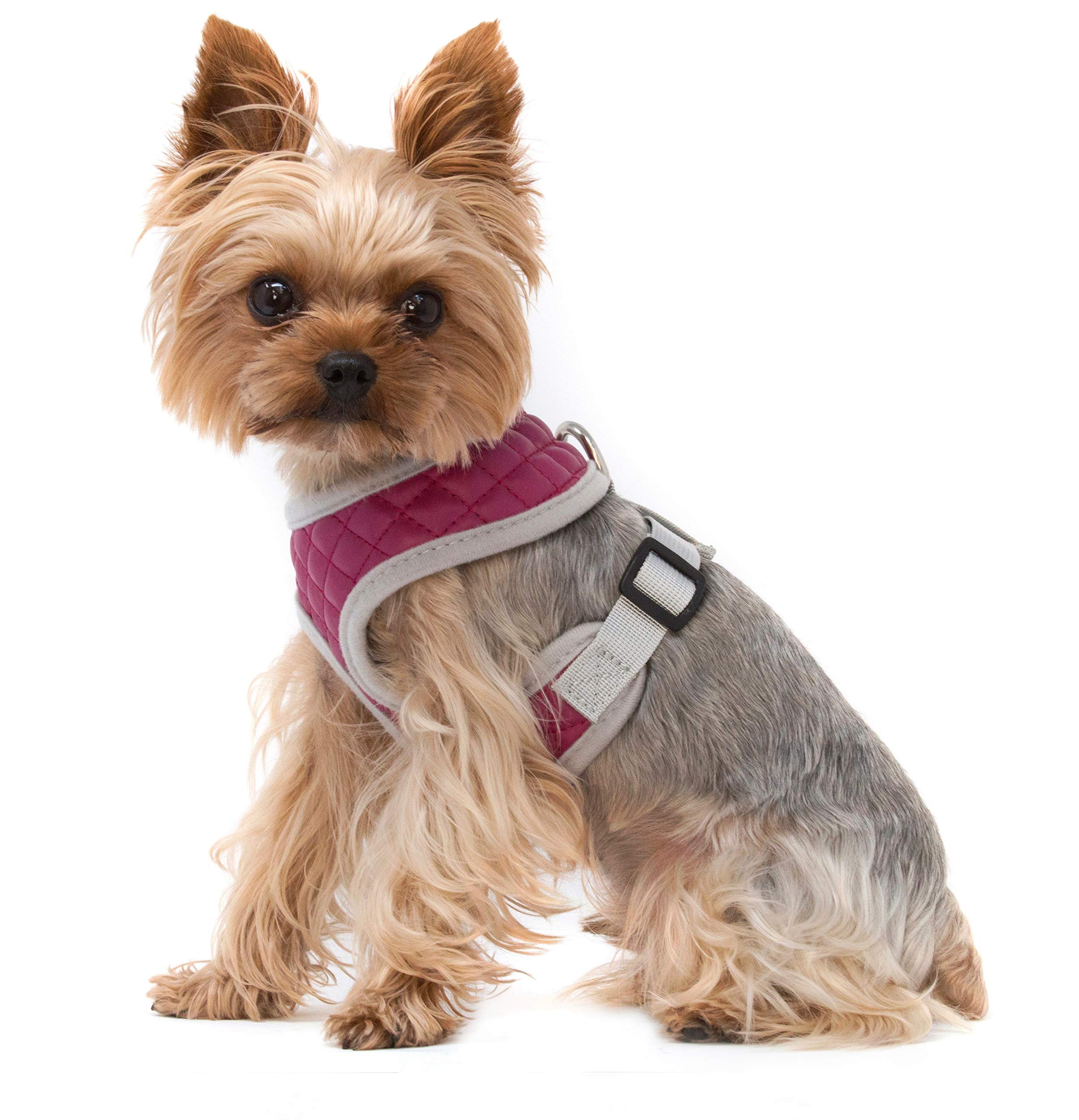 ZuGoPet Quilted Harness (Small 12''-17'', Pink) by ZuGoPet (Image #3)