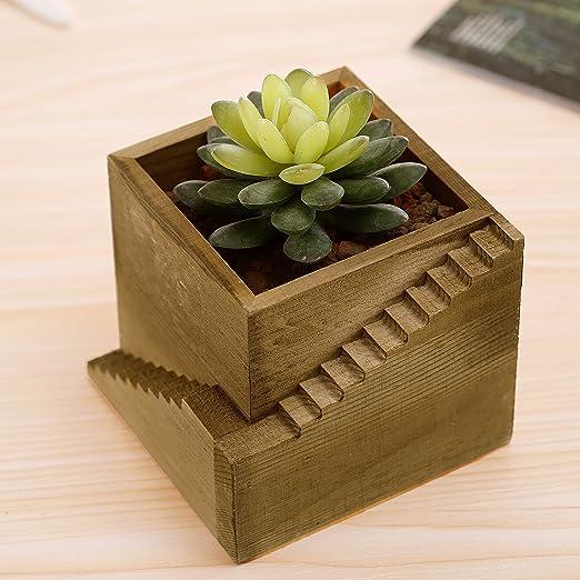 Moderno diseño de escalera de madera cubo maceta contenedor de caja, pequeño Cactus plantas carnosas maceta: Amazon.es: Jardín