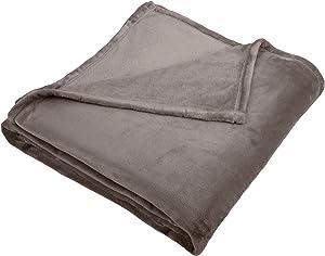 Pinzon Velvet Plush Blanket - Twin, Grey