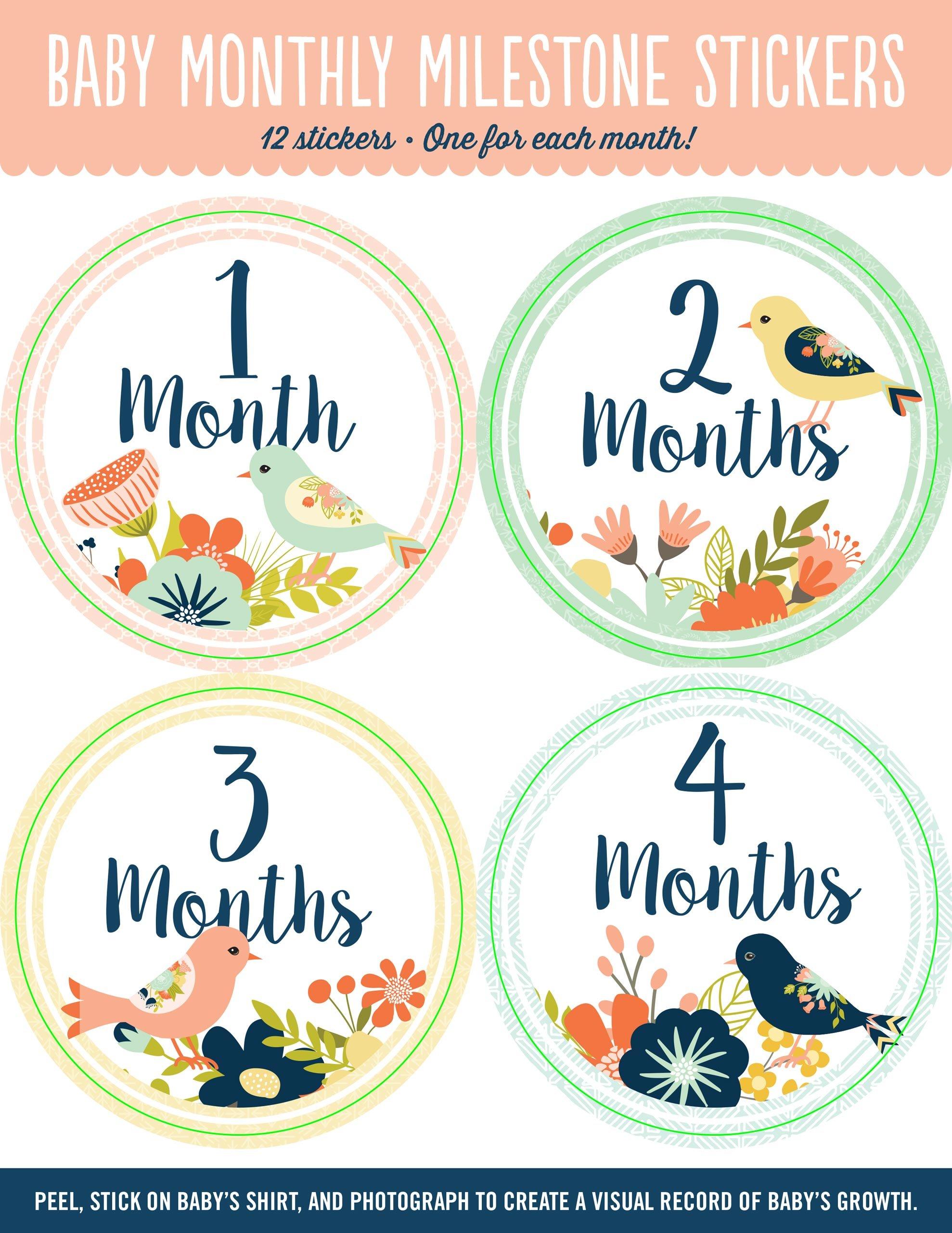 Baby Monthly Milestone Stickers: Birds (12 stickers) pdf