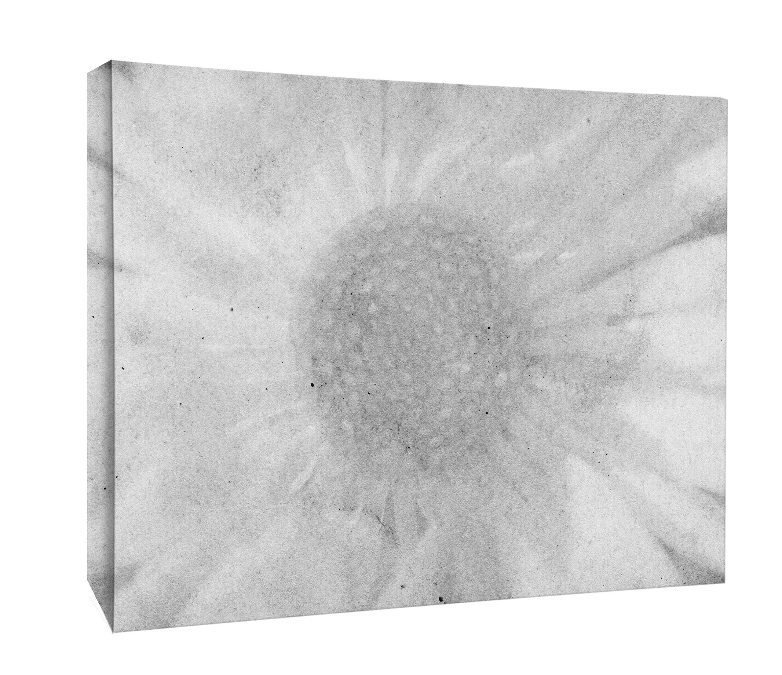 JP London BWMCNV2092 2'' Thick Heavyweight Black & White Gallery Wrap Canvas Hendrix Grunge Flower Power Wallpaper, 24 x 36''