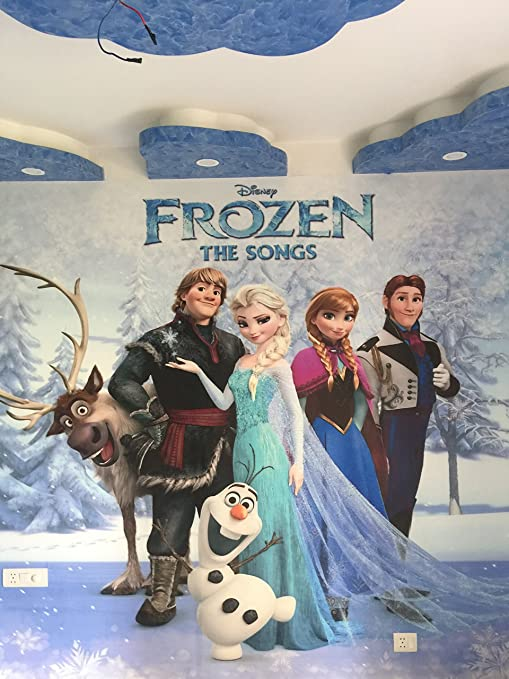 Trustech Customised (Frozen) 3D Wallpaper for Kids Room Home