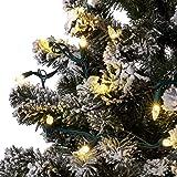 Aurio Outdoor/Indoor Christmas Lights 50-Count C3