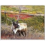 "Simply Calendar ""North American Wildlife"" 2018 Wall Calendar -10.5"" x 18"" (Open)"