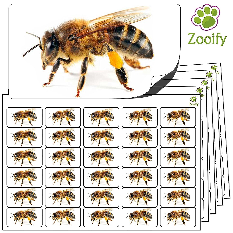 480 Pegatinas - abeja (38x21mm) Etiquetas de animales autoadhesivas de alta calidad de Zooify. Label Create