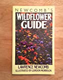 Newcomb's Wildflower Guide: An Ingenious New Key System for Quick, Positive Field Identification of the Wildflowers…