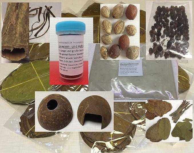 Seemandelbaum Set für Garnelen, Krebse & Co - Futter, Blätter, Rinde, Saatmandel - BLITZVERSAND