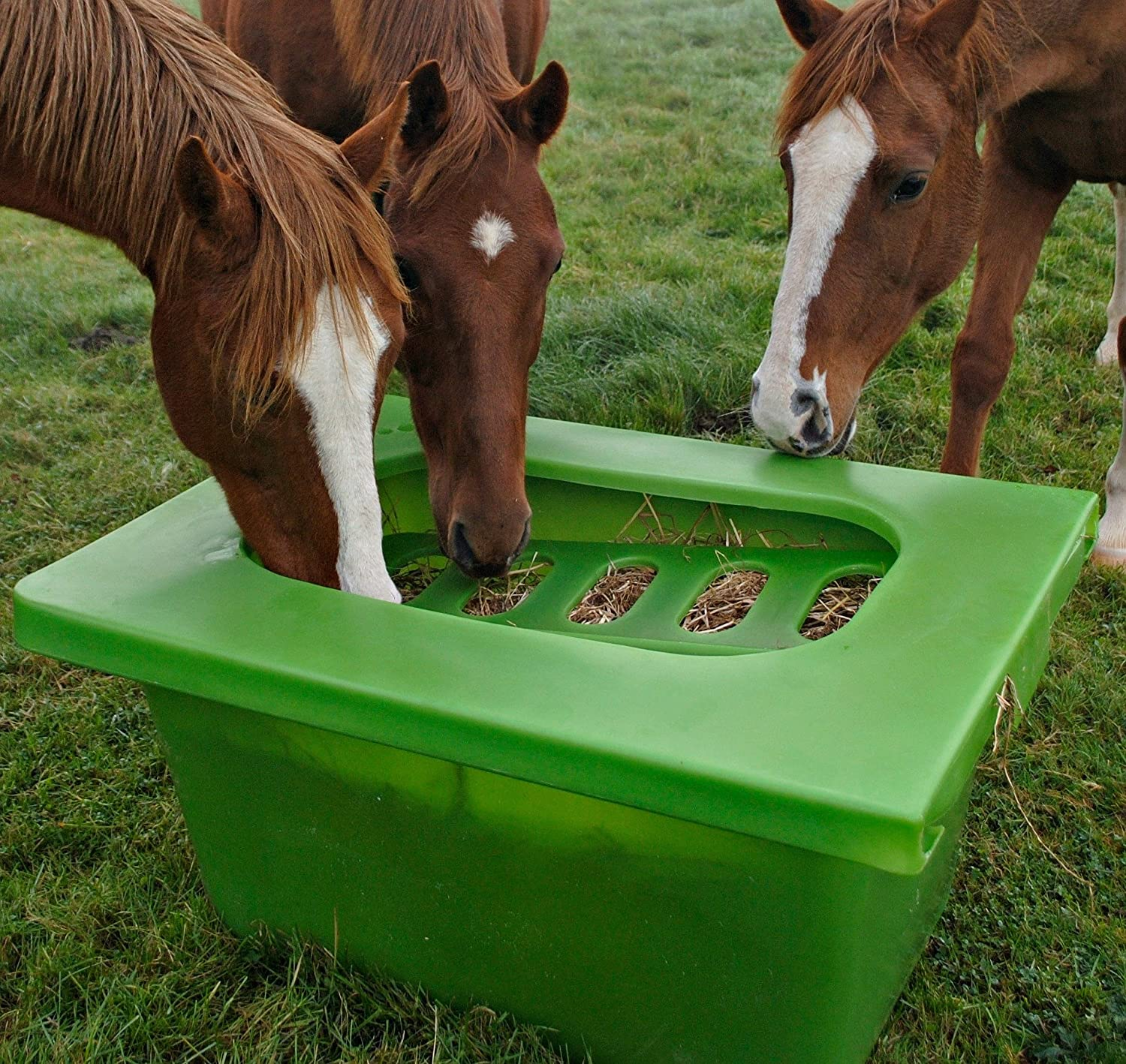 play ebay hay forage feeders p itm sale feeder free for horse