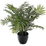 """Closer to Nature Artificiale 2ft 5 """"Bamboo Palm Tree - seta artificiale Impianti e Albero Gamma"""