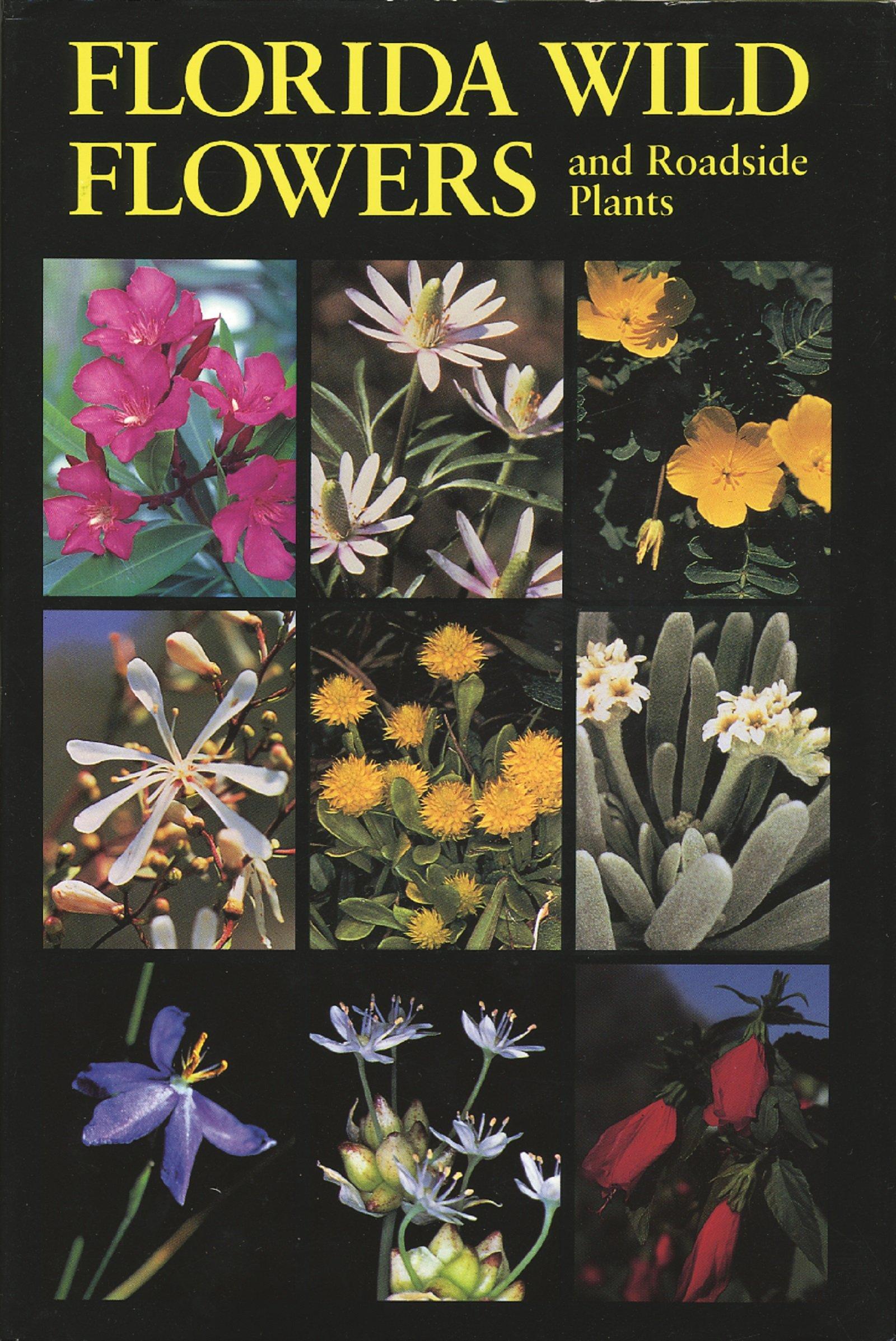 Download Florida Wild Flowers and Roadside Plants pdf