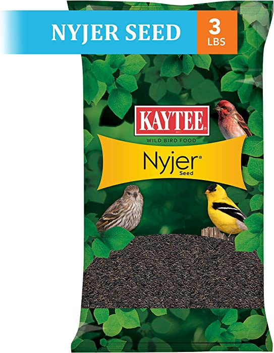 Top 9 Bird Feeder For Nyjer Food
