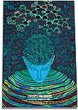 Vivid Biology Plakat neuronaukowy z odkrytymi mózgami - 42 cm x 60 cm