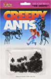 Amazon.com: Package of 144 Plastic Picnic Ants: Toys & Games