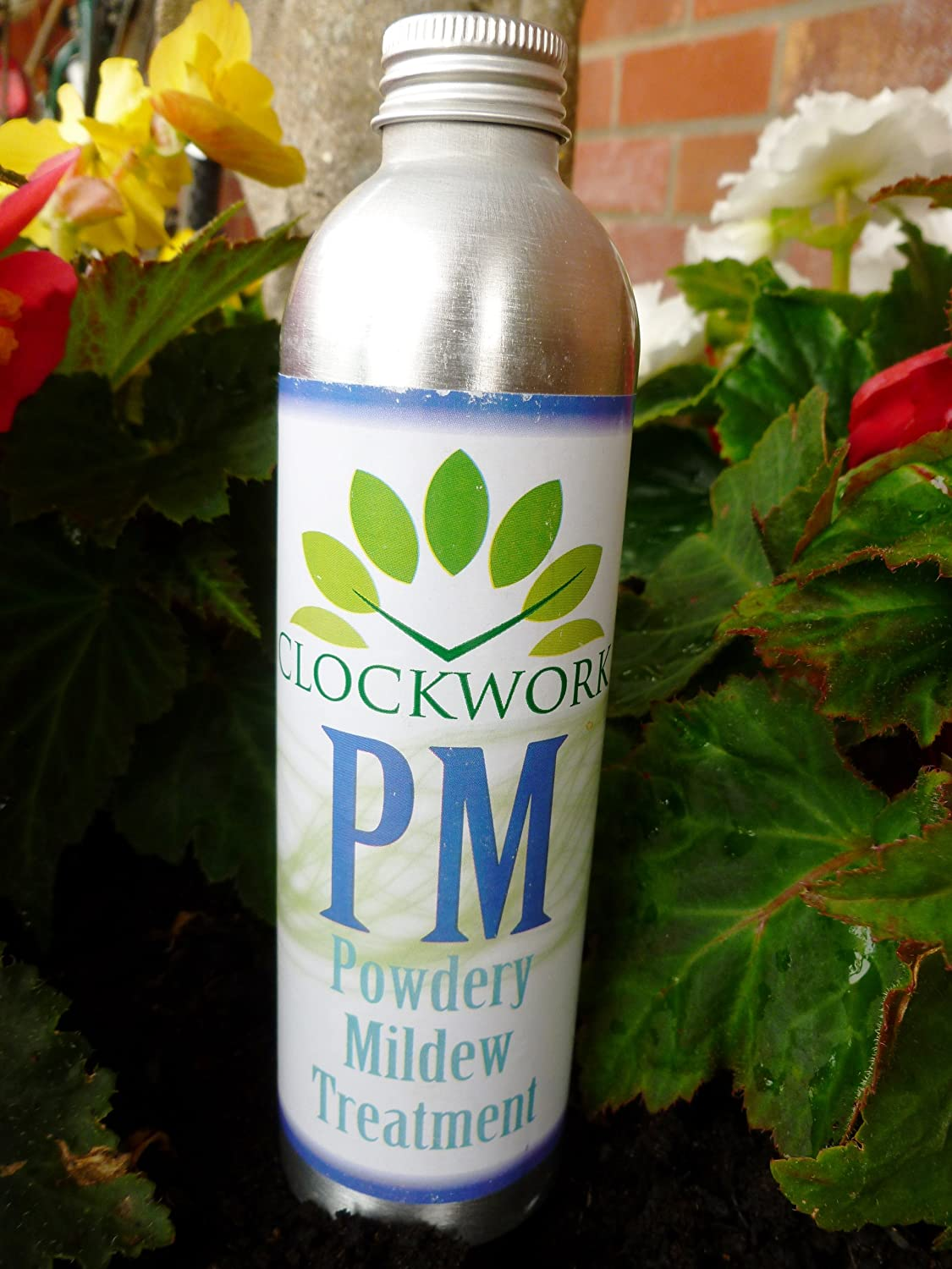 PM Powdery Mildew treatment Clockwork